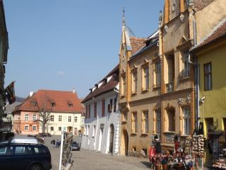 Romantic 1 bedroom Sighisoara Bed and Breakfast with Internet Access - Sighisoara vacation rentals