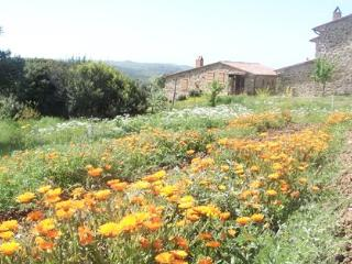 2 bedroom Farmhouse Barn with Deck in Monterotondo Marittimo - Monterotondo Marittimo vacation rentals