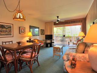 1 bedroom Apartment with Internet Access in Lahaina - Lahaina vacation rentals