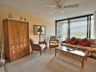 Lahaina Shores #522 - Lahaina vacation rentals