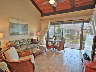 2 bedroom Apartment with Internet Access in Lahaina - Lahaina vacation rentals