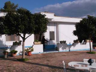 Grande casa con ampio giardino - Pulsano vacation rentals