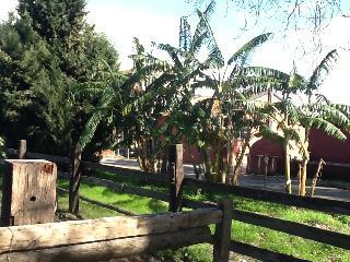 Cozy Lamezia Terme vacation Condo with Internet Access - Lamezia Terme vacation rentals