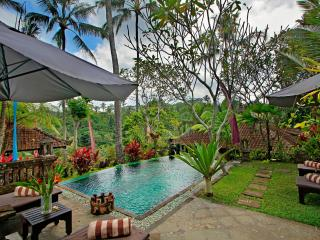 The Mahogany Villa - 2 Bedroom Ubud Nature View - Ubud vacation rentals