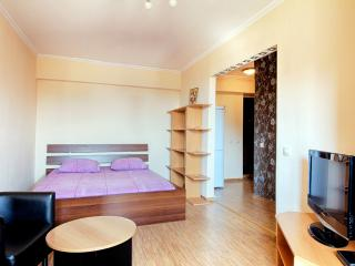 Studio for Krasnopresnenskoj - Moscow vacation rentals