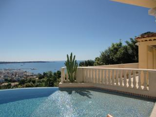 Nice Villa with Internet Access and Dishwasher - Cannes vacation rentals