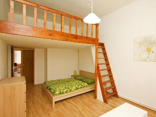 Beautiful apartment in central - Prague vacation rentals