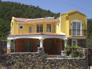 Comfortable 3 bedroom Villa in Yesiluzumlu with A/C - Yesiluzumlu vacation rentals