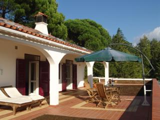 Comfortable 1 bedroom Apartment in Monchique - Monchique vacation rentals