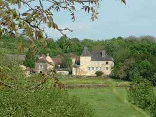 Nice 6 bedroom Manor house in Hautefort - Hautefort vacation rentals