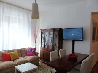 Careggi - Large Apartment for 6 people - Florence vacation rentals