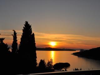 Apt Zara - Lapad with sea view - Dubrovnik vacation rentals