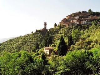 Beautiful Tuscan farmhouse near Lucca, 3 bedrooms - Pescia vacation rentals