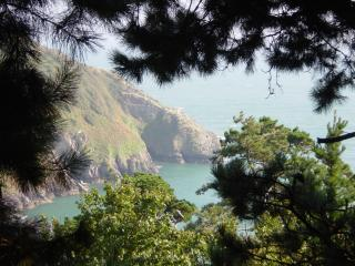 3 The Pines- holiday apartment with fab views - Kingswear vacation rentals