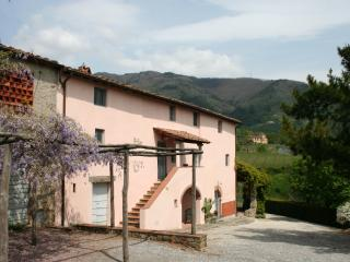 Villa Nardinello - Matraia vacation rentals