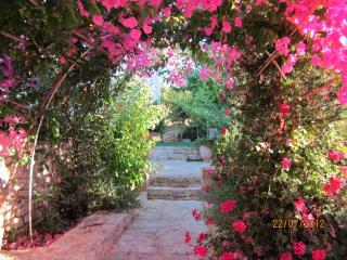 Elegant ALOE VILLA, pool, view, near restaurants, beaches, Rethymno. - Prines vacation rentals