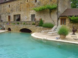 4 bedroom Watermill with Internet Access in Daglan - Daglan vacation rentals