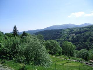 Duplex 65m2 Vue panoramique Proche Route des Vins - Linthal vacation rentals