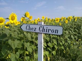 Beautiful Gite with Internet Access and Satellite Or Cable TV - Chalais (Charente) vacation rentals