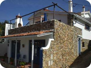 Adorable House with Deck and Cleaning Service in Figueiro dos Vinhos - Figueiro dos Vinhos vacation rentals