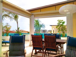 The Palm Terrace 2BD Penthouse - Livadhia vacation rentals