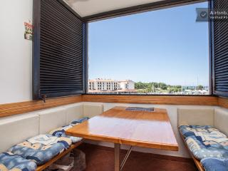 Perfect Condo with A/C and Satellite Or Cable TV - Cervar Porat vacation rentals
