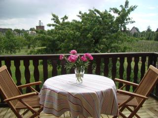 Diek Kieker - on the Elbe - Gruenendeich vacation rentals