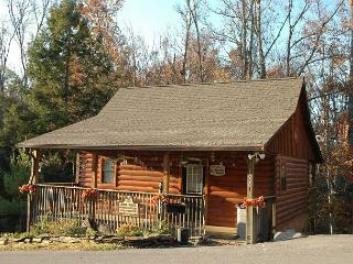 Charming Pet-Friendly 1 BR Studio Pigeon Forge Resort Cabin Near Dollywood - Sevierville vacation rentals