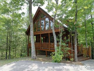 Smoky Mountain Cabin Beary Secluded 296 - Sevier County vacation rentals