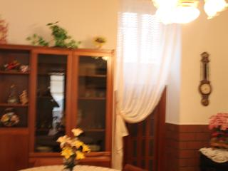 Nice Condo with Internet Access and Washing Machine - Minori vacation rentals
