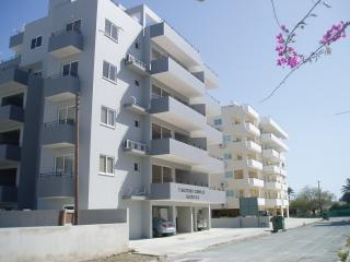 Beautiful Condo with A/C and Television - Larnaca District vacation rentals