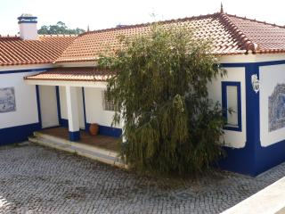 Beautiful 4 bedroom Obidos Villa with Internet Access - Obidos vacation rentals