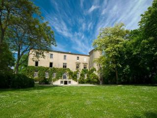 Château La Commanderie, near Mirepoix - Plaigne vacation rentals