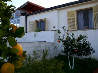 Casa Nonna in the olive tree garden sunny terrace - Balestrate vacation rentals