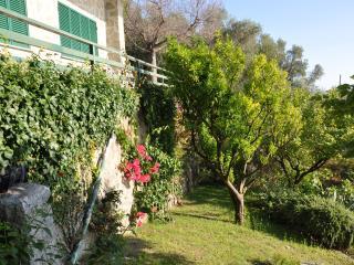 Cozy 2 bedroom Carrodano Villa with Internet Access - Carrodano vacation rentals