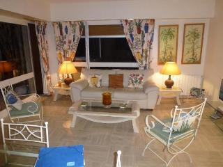 Tourelles 4 Bedroom Apartment with a Balcony, in Cannes - Cannes vacation rentals