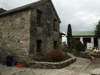 Clarendon House - Boyle vacation rentals