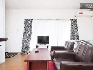 Entire Home in Central Tokyo: Omotesando - Shibuya - Shibuya vacation rentals