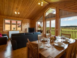 Comfortable Cabin with Internet Access and Dishwasher - Stokesley vacation rentals