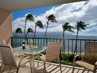 Convenient 1 bedroom Condo in Wailuku - Wailuku vacation rentals