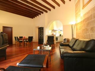 Nice Condo with Internet Access and Satellite Or Cable TV - Palma de Mallorca vacation rentals