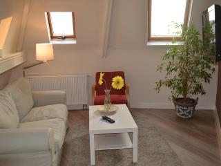 Apartment C close to beach and boulevard - Scheveningen vacation rentals