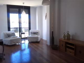 Enjoy the center and the beach - Alicante vacation rentals