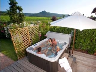 Podere Vignanova -App. 4 pers. - Castagneto Carducci vacation rentals