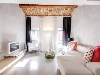 Luxury Attic with Terrace - Rome vacation rentals