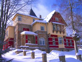 Nice Condo with Internet Access and Dishwasher - Schierke vacation rentals
