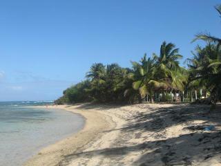 3 bedroom House with Internet Access in Isla de Vieques - Isla de Vieques vacation rentals
