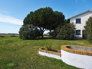 Bright 4 bedroom Vacation Rental in Capalbio - Capalbio vacation rentals