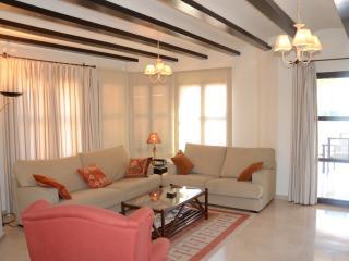 Bright 4 bedroom Fuente alamo de Murcia Villa with Dishwasher - Fuente alamo de Murcia vacation rentals