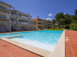 Well equipped 2 bed.apartment - Obidos vacation rentals